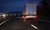 Сильные и независимые угонщики украли грузовик с кошачьим кормом в Шушарах
