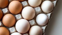 В России планируют повысить цены на курицу и яйца