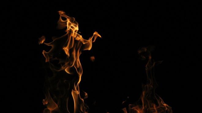 """Поджигатели """"Мерседеса"""" на Каменоостровском приехали на поджог на каршеринге"""