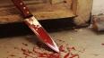 На Парнасе рабочий-мигрант ножом убил своего соотечестве...