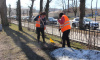 В Выборге восстановят лавочки и урны, разбитые вандалами за зиму