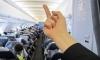"""""""Аэрофлот"""" уволил стюардессу, показавшую средний палец пассажирам"""
