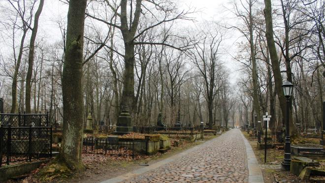 В Петербурге признали региональным памятникомСмоленское лютеранское кладбище