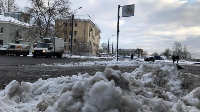 За неделю с дорог Петербурга убрали 3,1 тысяч тонн мусора