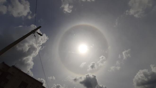 В небе над Петербургом и областью заметили солнечное гало