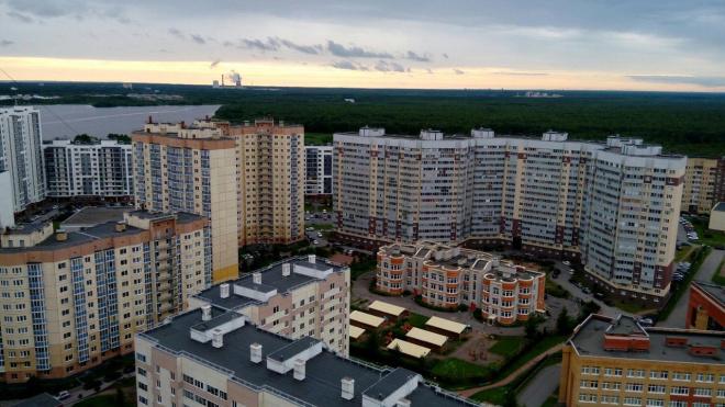 """В Петербурге выбрали победителей проекта """"Твой бюджет"""" в трех районах"""