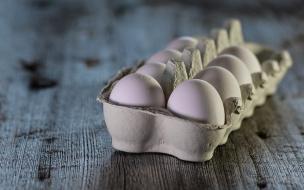 Доктор Мясников рассказал, сколько куриных яиц можно есть в день