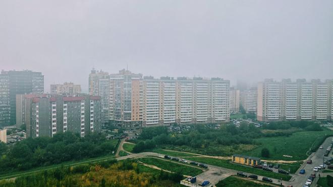 В среду Петербург накрыл густой утренний туман