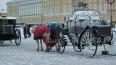 Петербуржцам пообещали снег и гололедицу 17 декабря