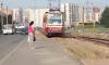 Трамваи №21, 40 и 48 не будут ходить по Сердобольской улице