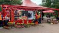 На Крестовском острове снесли незаконное летнее кафе