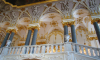 Эрмитаж выделил на крыс и тараканов больше миллиона рублей