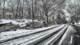Ночная битва: на уборку снега в Петербурге бросили ...