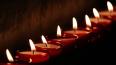 Петербуржцы выстроились в живой самолет в память о жертв...
