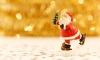 Во Франции у Деда Мороза угнали сани с игрушечными оленями