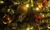 В Эрмитаже нарядили елки к Новому году