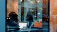В Петербурге неизвестный сообщил о заминировании кафе в ...