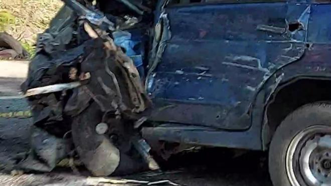Пострадавшая в ДТП с мусоровозом в Ленобласти погибла