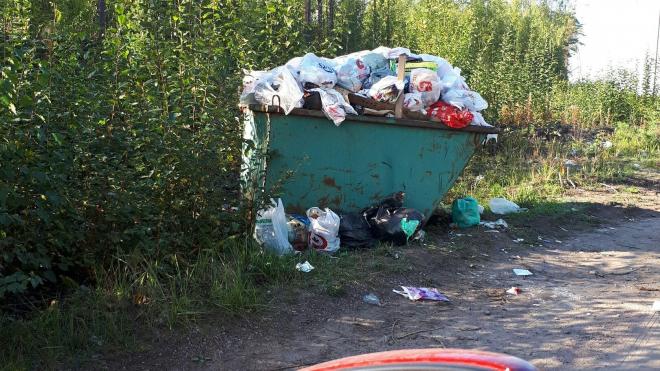 Фотофакт: мусорный контейнер в поселке им. Калинина «подавился» диваном