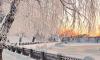 На смену морозам в Ленобласть пожалуют метель и гололедица