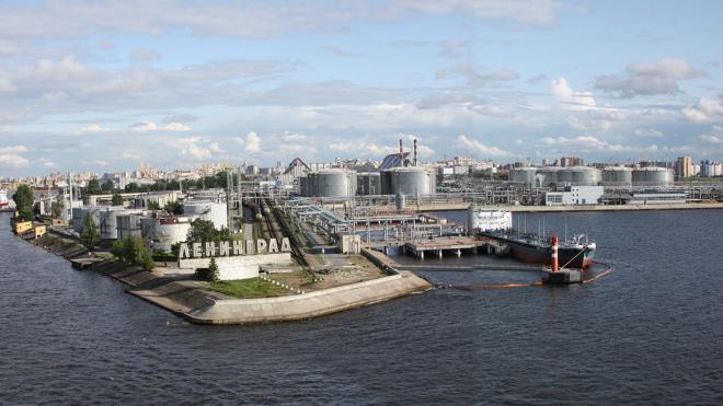 Большой порт из Петербурга могут перенести в Усть-Лугу