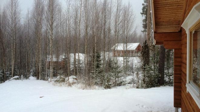 С дачи в Выборге угнали снегоболотоходы за 1,8 млн рублей