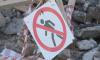 Экологи вывезли из Петербурга за неделю более 50 кг химических отходов