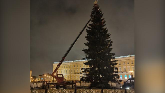 На Дворцовой площади начали разбирать новогоднюю елку