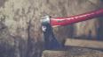 В Ленобласти мужчина убил собутыльника топором