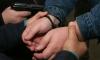 В Петербурге пьяный мужчина открыл стрельбу в детском саду