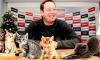 Как Слуцкий изменил сборную России – объясняем на котятах
