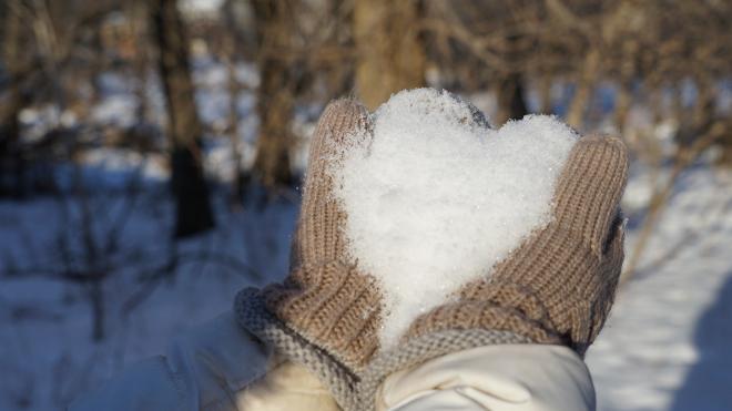 В воскресенье в Ленобласти пройдет небольшой снег