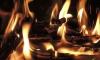 В страшном пожаре под Петербургом заживо сгорели мужчина и женщина