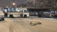 Авария маршрутки и заказного автобуса перекрыла две ...