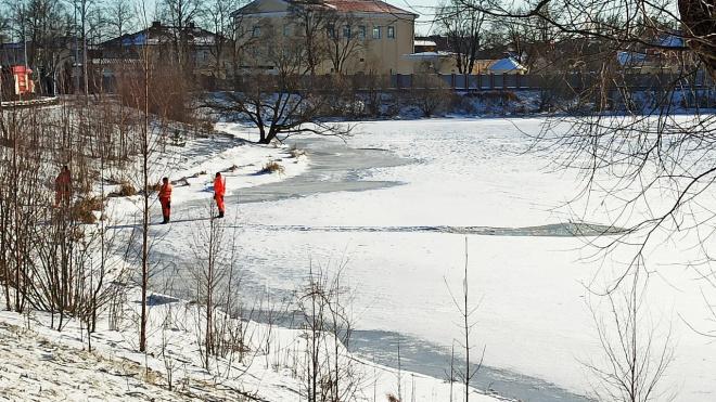 Лыжник провалился под лёд на Орловском пруду и самостоятельно выбрался