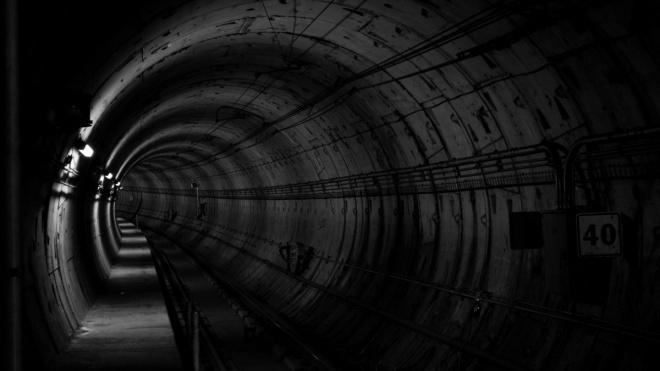 """Власти Петербурга """"урезали""""бюджет на строительство коричневой ветки метро"""