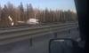 Крупная авария на КАД в Петербурге: к месту ДТП прибыл медицинский вертолет