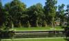 Петербуржцы выберут лучшие сады города