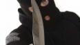 Полиция Петербурга задержала бандитов, выкинувших ...