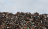 Во Фрунзенском районе на мусорной свалке нашли останки обгоревших тел