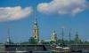 В Петербурге поймали юных воришек, грабивших зайца у Петропавловской крепости