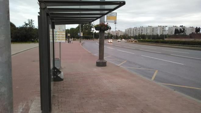 В восьми районах Петербурга до сентября установят новые остановочные павильоны
