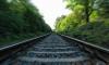 В Колпино поезд отрезал стопы бездомному человеку