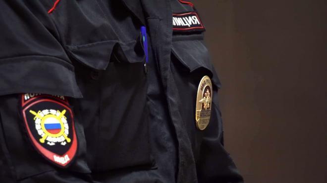 В Ленобласти мужчина ударил полицейского ногой при задержании