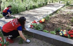 Выборгский Совет молодежи провел субботник на братском захоронении