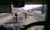 По Киевскому шоссе прогулялся табун лошадей