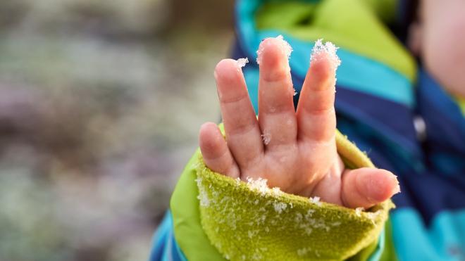 В среду в Ленобласти пройдет мокрый снег с дождем