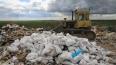 Сладкая гадость: в Петербурге уничтожили 4 тонны просроч...