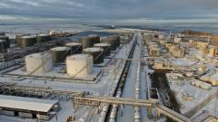 Петербургский нефтяной терминал в 2020 г. увеличил перевалку грузов на 16,6%