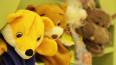 В Пушкине угонщик похитил фуру с детскими игрушками